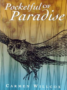 Pocketful of Paradise Book Illustration